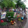 12th Annual Tour of Garden and Homes held in Clear Lake