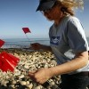Group searches L.A. County beaches for tsunami debris
