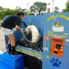 Paw-some! Do-it-yourself doggie wash ready for business