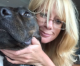 "Ventura woman's ""dangerous"" pit bull mastiff avoids execution after three attacks"