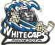 Women's Pro Hockey: Minnesota Whitecaps fall to Boston Pride, 5-1