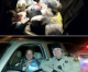 Law enforcement stops motorists for minor violations and gives turkeys instead of tickets