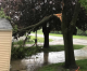 Gov. Reynolds issues disaster proclamation for four North Iowa counties