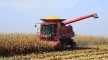 Governor Reynolds signs Harvest Proclamation