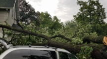 Up to $3 Million in U.S. Department of Labor Disaster Recovery Funding for Derecho Recovery annouced for Iowa