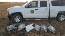 Man charged with illegal hunting after killing 6 trumpeter swans in Iowa
