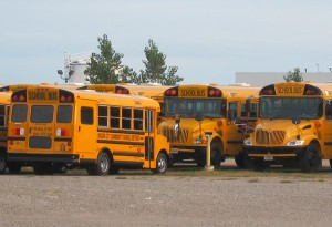 School buses in Mason City