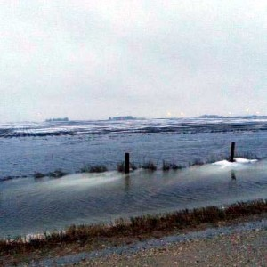 Standing water from two days of rainfall in Cerro Gordo county