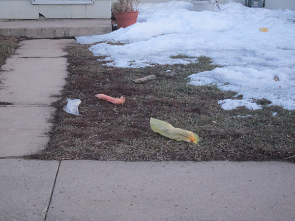 Once the snow melts, thousands of Mason City Shoppers will be exposed, rotting in the grass and streets of the city.  If you pick one up, be very careful about responding to ads.