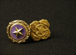 the gold star has officially been recognized as a symbol of loss since 1918.