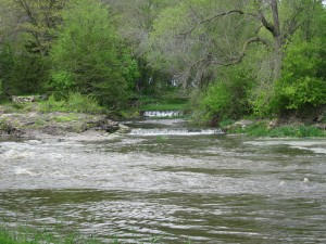 Shell Rock River at Camp at the Woods