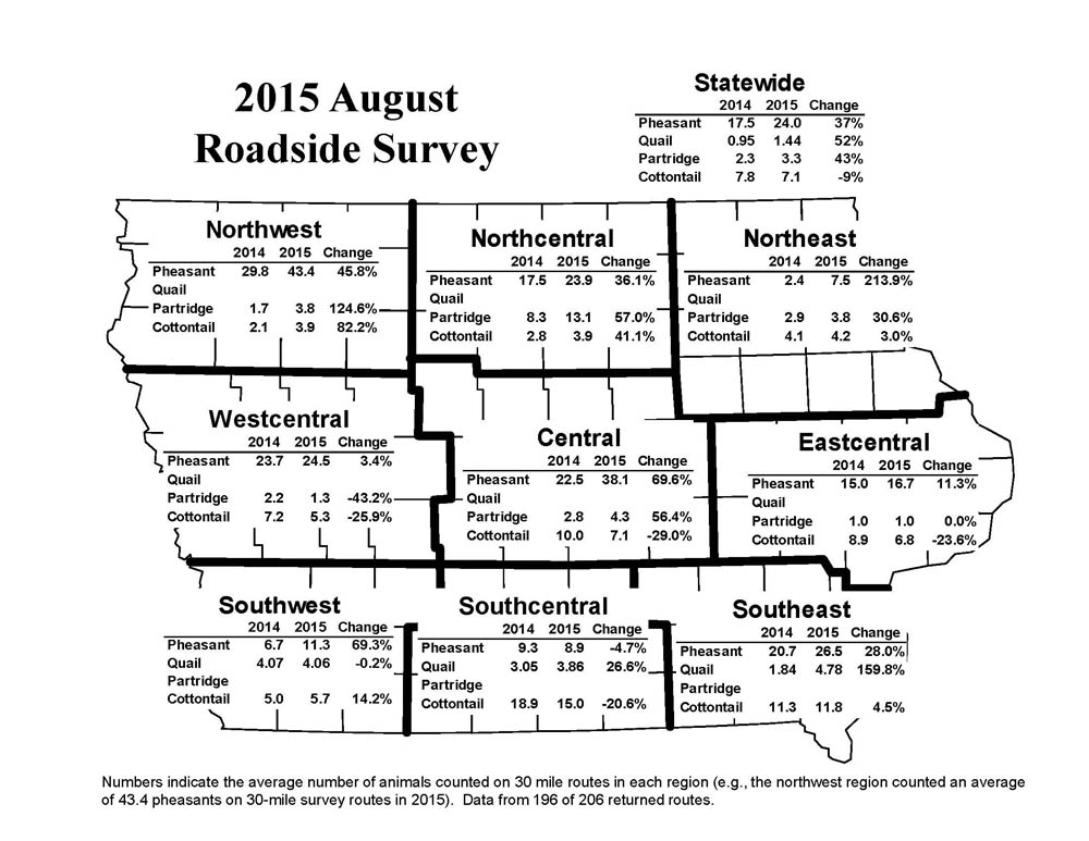 DNR: Iowa's pheasant population jumps 37 percent; quail highest ...
