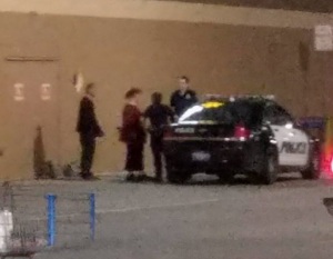 Fransen loaded into police car at Walmart